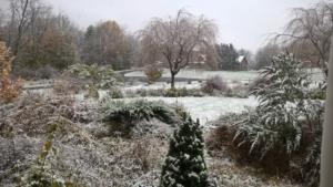 Novemeber snow  positive week